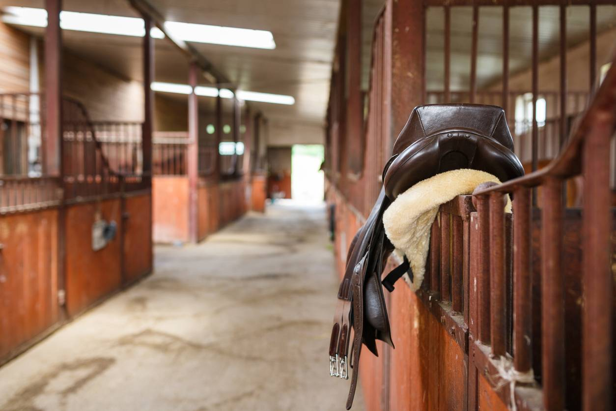 choisir selle cheval